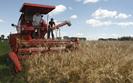 Dotacje dla rolników. Przetwórców czekają chude lata