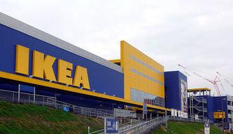IKEA musi rozwijać e-commerce. Zapowiedziała zwolnienie 150 osób