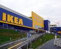 Wiadomości: IKEA musi rozwijać e-commerce. Zapowiedziała zwolnienie 150 osób