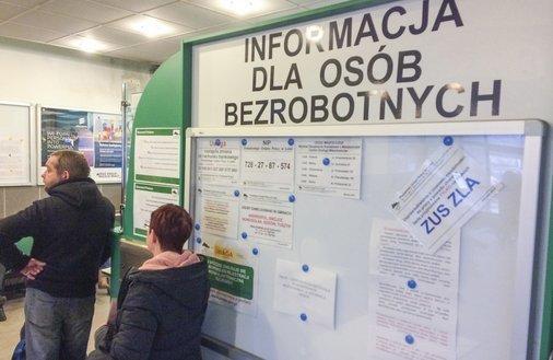 """Mapa polskiego bezrobocia. Eksperci: """"Każdy kto chce, może znaleźć pracę"""""""