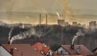 PGNiG chce przeciwdziałać smogowi. Będzie edukował Polaków