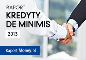 Kredyty z gwarancją de minimis. Raport MarketMoney.pl
