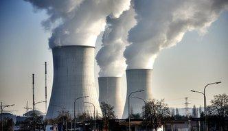 Promieniotwórcze odpady w Polsce. Tajemniczy przetarg Ministerstwa Energii