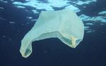 MARLISCO demonstracją publicznej woli rozwiązania problemu odpadów morskich