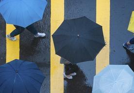 Kto musi płacić podatek od deszczu? Sprawdź ten i inne, kontrowersyjne podatki!