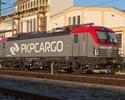 Wiadomości: Akcje PKP Cargo ostro w dół. Zyski na boomie budowlanym nie pomogły