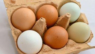Jaja w Unii Europejskiej droższe niż kurczaki. Eksperci przekonują, że trend ten będzie się nasilał