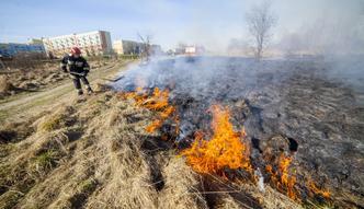 Wysokie kary za wypalanie traw. ARiMR ostrzega