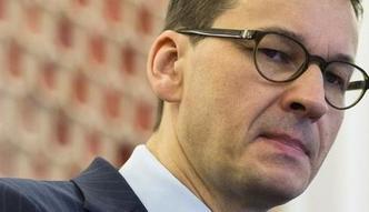 Wycinka w Puszczy Białowieskiej. Mimo deklaracji Morawieckiego Bruksela szykuje wniosek o karę