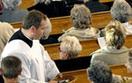 Po apostazji Kościół i tak cię nie zapomni. Czyli jak związki wyznaniowe w Polsce wdrażają RODO