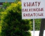 Na firmę na wsi można dostać nawet 100 tys. złotych
