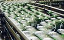 Carlsberg traci miliony i zwalnia pracowników
