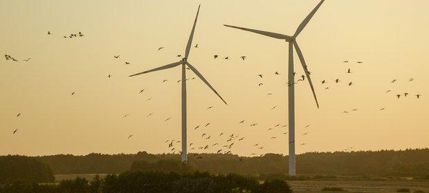 Ustawa o rynku mocy wejdzie w życie dopiero od 2021 roku, ale elektrownie już liczą zyski. Wiatraki mogą być bardziej opłacalne