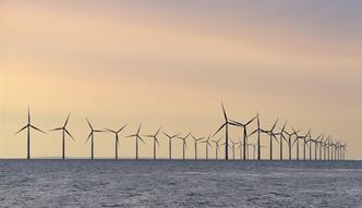 Ogromny tort do podziału dla polskich firm. PiS szykuje program dotyczący energetyki wiatrowej