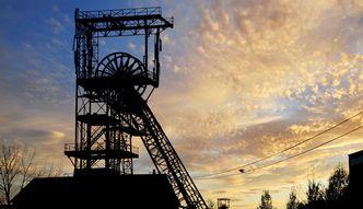 """PSL chce budować kopalnie na Lubelszczyźnie. """"Mamy idealny moment"""""""